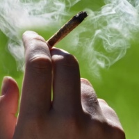 Your Employees Are Smoking Pot! Now What?